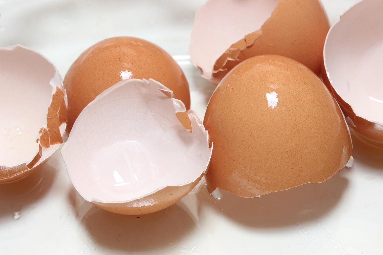 Jaja iich unikatowe właściwości