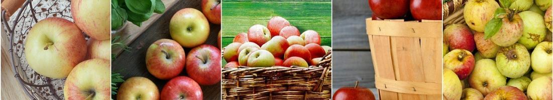 Sezonowe owoce i warzywa sierpnia oraz ich zalety